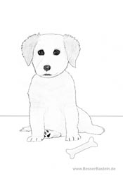 Kostenlose Und Handgemalte Ausmalbilder Zum Drucken Tiere