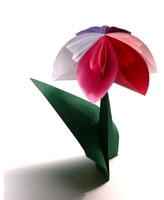 anleitungen zum falten von origami pflanzen und blumen. Black Bedroom Furniture Sets. Home Design Ideas